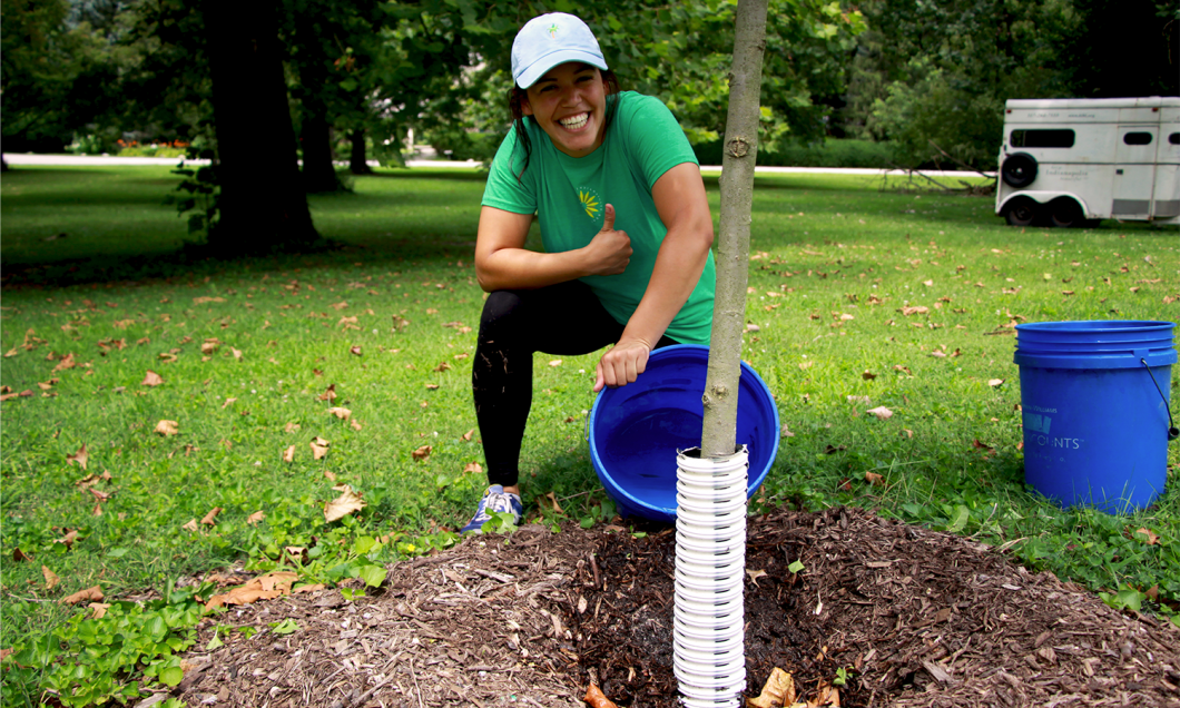 200 Trees for Indy's Next 200 Years: Bicentennial Tree Planting